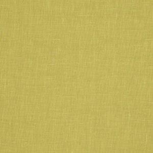 01367 Lime 95