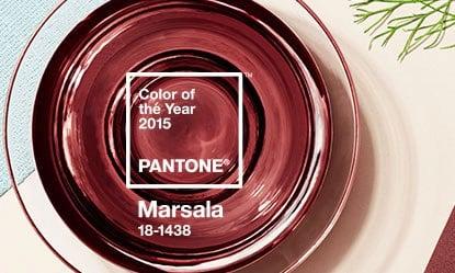 Pantone2015_Marsala (2)